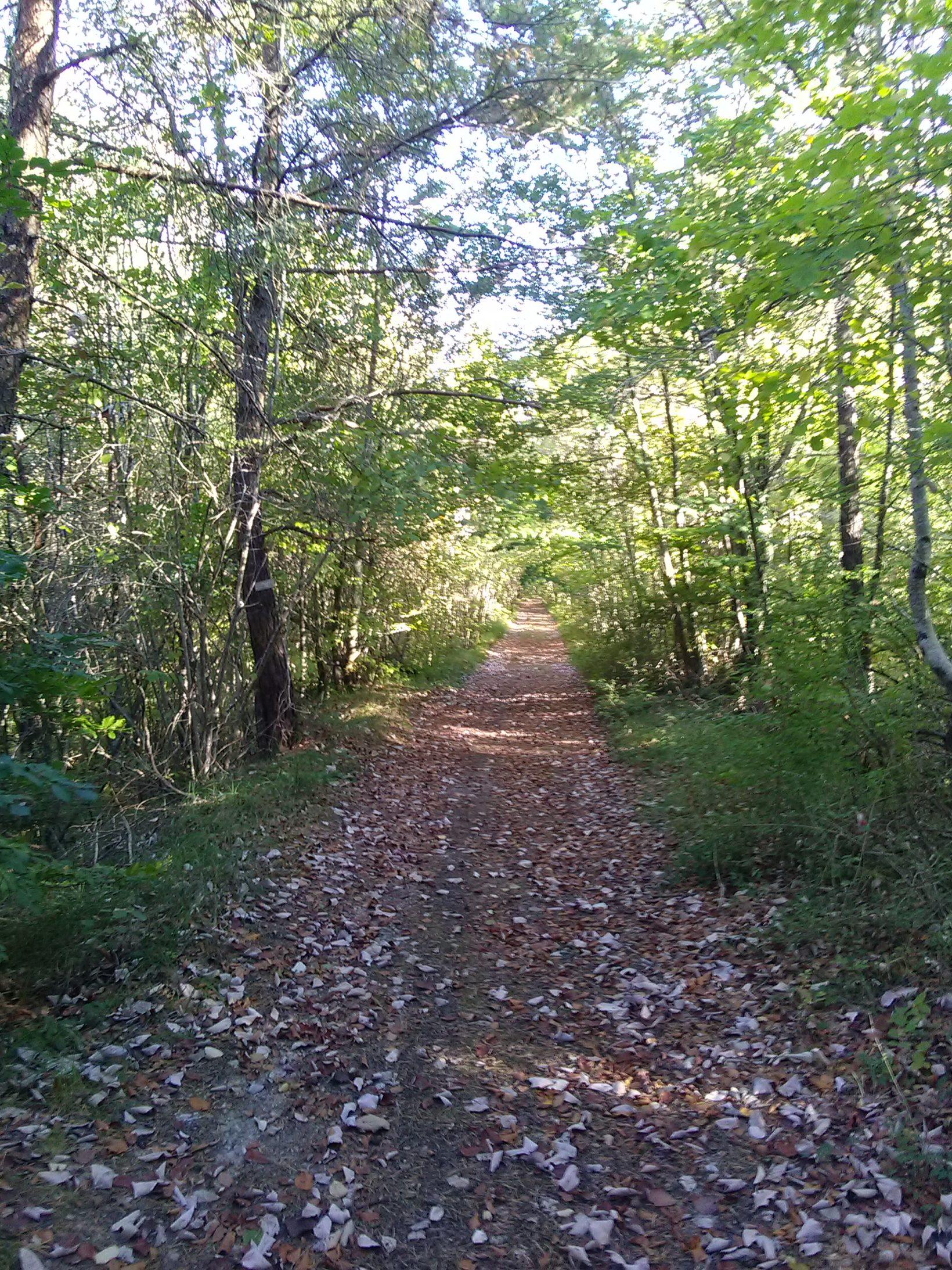 Walk Ancient Roman Roads