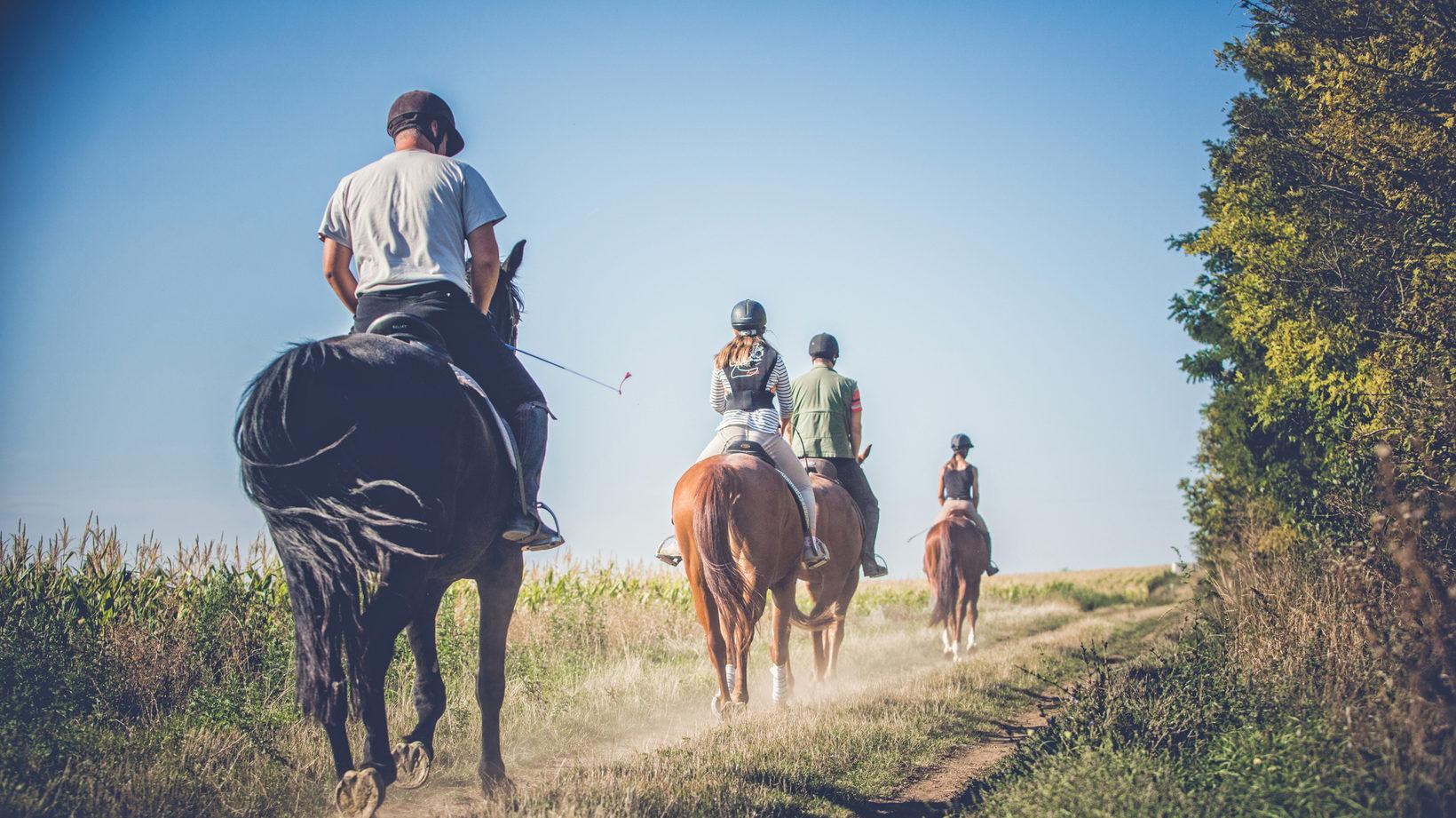 Horse Back Trekking